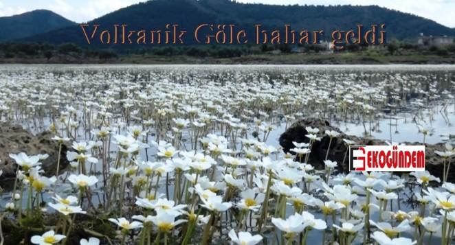 Volkanik Göl'e bahar geldi