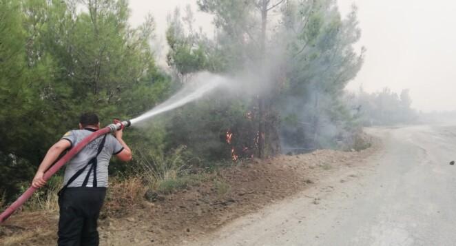 Orman Yangınlarıyla Mücadele Gönüllüsü Olmak ister misiniz?