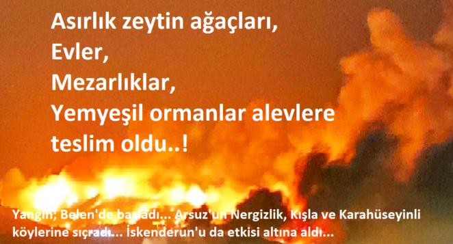 """""""Hatay'daki orman yangınları araştırılsın"""" önergesine AKP ve MHP'den ret"""