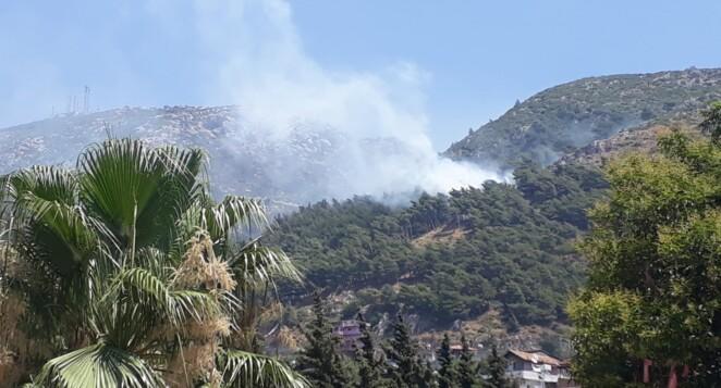 Habib-i Neccar Dağı'ndaki yangın kontrol altında Hassa'da tehlike devam ediyor…